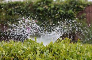 Winterize Your Lawn Pump